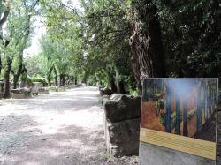 Les Alsycamps, Vincent Van Gogh