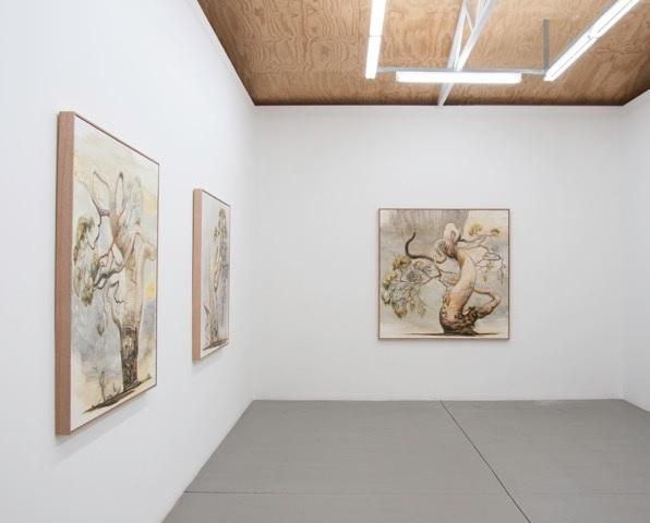 Tim McMonagle, Installation view